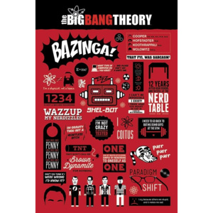 Plakát, Obraz - BIG BANG THEORY - infographic, (61 x 91,5 cm)