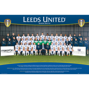 Plakát, Obraz - Leeds United AFC - Team Photo 13/14, (91,5 x 61 cm)