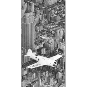 Obraz, Reprodukce - Hawks airplane in flight over New York city, 1938, (100 x 50 cm)