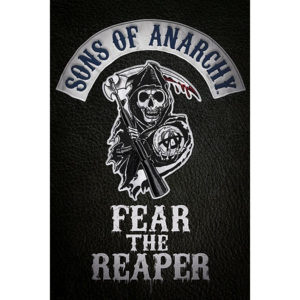 Plakát, Obraz - Sons of Anarchy (Zákon gangu) - Fear the reaper, (61 x 91,5 cm)