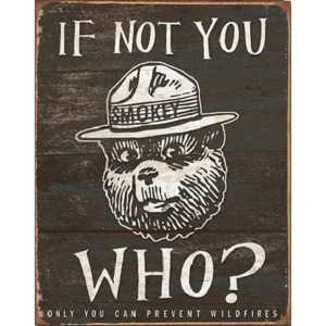 Plechová cedule SMOKEY BEAR - If Not You, (31,5 x 40 cm)