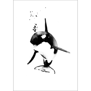 Plakát Mini Killer Whale A4