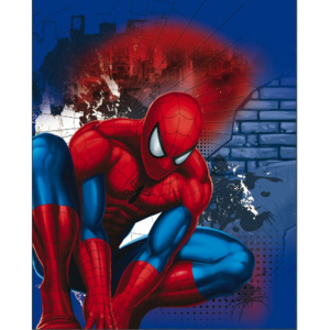 KAUFMANN Fleece deka do auta Spiderman 120/150 120x150 cm 100% Polyester