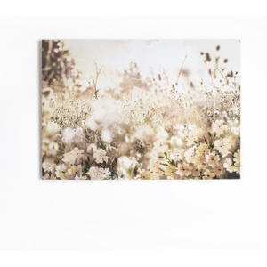 Obraz 42-236, Layered Meadow Landscape, Wall Art, Graham Brown