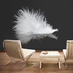 Fototapeta - White feather - 250x193