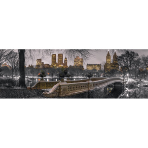 Plakát, Obraz - New York - Bow Bridge Central Park, (91,5 x 30 cm)