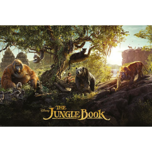 Plakát - Kniha džunglí, The Jungle Book (2)