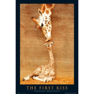 Plakát - First Kiss Giraffe (2)