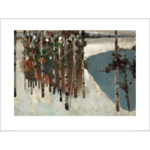 Obraz, Reprodukce - Law Wai Hin - Birch Trees, (80 x 60 cm)