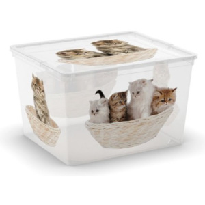KIS C-Box Puppy & Kitten Cube 27l