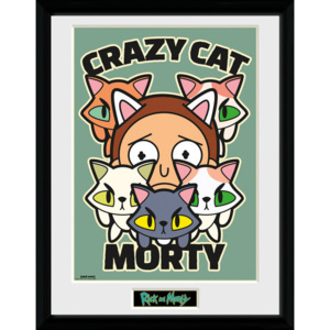 Obraz na zeď - Rick and Morty - Crazy Cat Morty