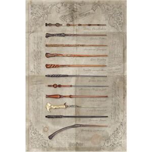 Plakát Harry Potter: The Wand Chooses The Wizard (61 x 91,5 cm)