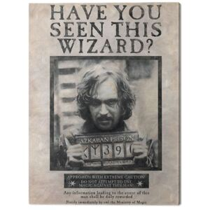 Obraz na plátně Harry Potter - Wanted Sirius Black, (60 x 80 cm)