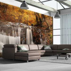 Bimago Fototapeta - Autumn landscape: waterfall in forest 550x270 cm