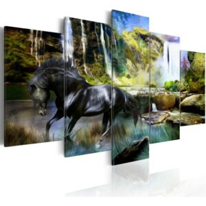 Obraz na plátně Bimago - Black horse on the background of paradise waterfall 100x50 cm