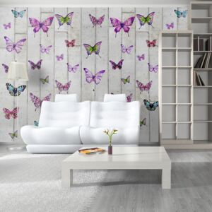Bimago Tapeta - Butterflies and Concrete role 50x1000 cm
