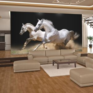 Bimago Fototapeta - Galloping horses on the sand 200x154 cm