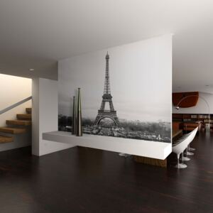 Fototapeta Bimago - Paris: black and white photography + lepidlo zdarma 250x193 cm