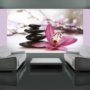 Fototapeta Bimago - Relaxation and Wellness + lepidlo zdarma 450x270 cm