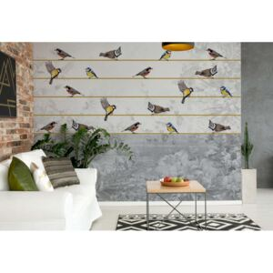 Fototapeta GLIX - Vintage Chic Birds And Floral +