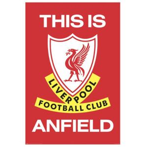 Plakát Liverpool FC: This Is Anfield (61 x 91,5)