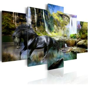 Obraz - Black horse on the background of paradise waterfall 100x50