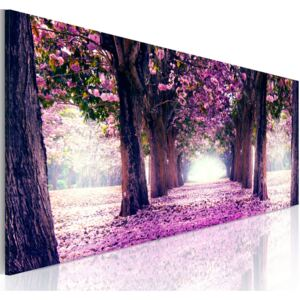 Obraz - Purple Spring 150x50