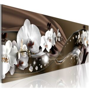 Obraz - Chocolate Dance of Orchid 150x50