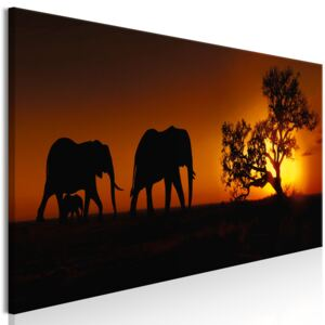 Obraz - Elephant Family (Orange) 120x40