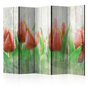 Paraván - Red tulips on wood 225x172