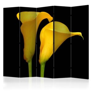 Paraván - Two yellow calla flowers on a black background II 225x172