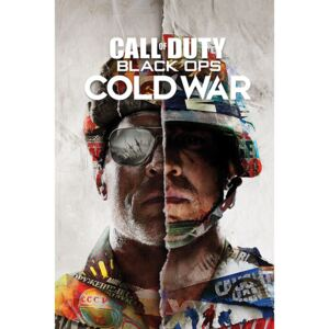 Plakát, Obraz - Call of Duty: Black Ops Cold War - Split, (61 x 91,5 cm)