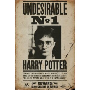 Plakát, Obraz - HARRY POTTER - Undesirable n2, (61 x 91,5 cm)