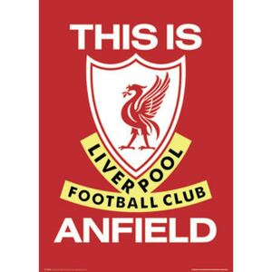 Plakát, Obraz - Liverpool - this is anfield, (61 x 91,5 cm)