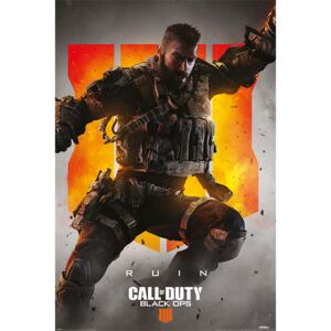 Plakát, Obraz - Call Of Duty – Black Ops 4 Ruin, (61 x 91,5 cm)