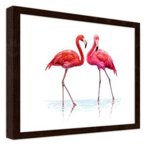 CARO Obraz v rámu - A Realistic Illustration Of Flamingos Standing In The Water 40x30 cm Hnědá