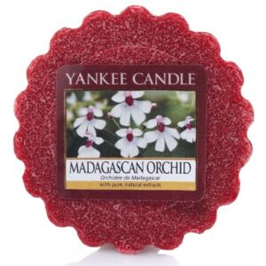 Vonný vosk do aromalampy Yankee Candle Madagascan Orchid 22g/8hod