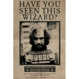Plakát, Obraz - Harry Potter - Wanted Sirius Black, (61 x 91,5 cm)