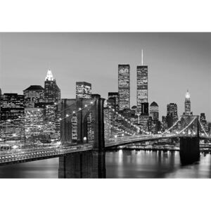 Fototapeta Manhattan Skyline at Night, rozměr 366 cm x 254 cm, fototapety W+G 138