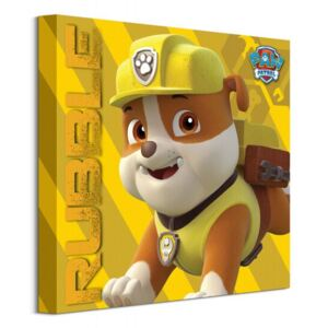 Obraz na plátně Paw Patrol (Rubble On The Double) 40x40cm WDC95934