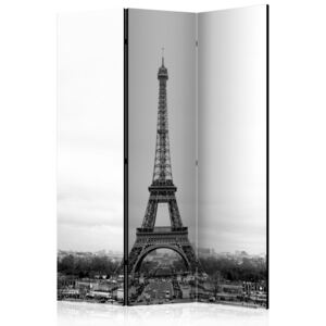 Paraván - Paris: black and white photography 135x172