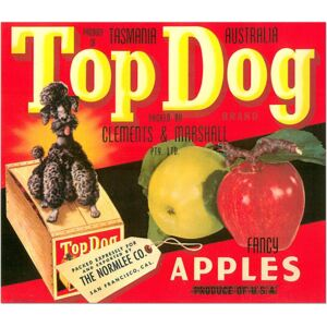 TopDog, Tasmania - Fancy Apples poster