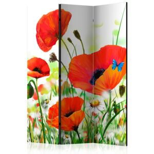 Artgeist Paraván - Country poppies [Room Dividers] 135x172