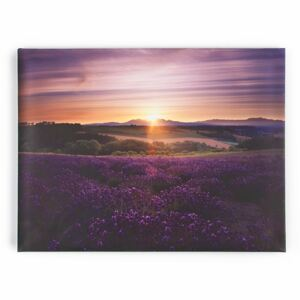 Obraz 40-886, Lavender Sunset, Wall Art, Graham Brown