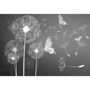 Fototapeta, Tapeta Modern Dandelions And Butterflies Grey And White, (152.5 x 104 cm)