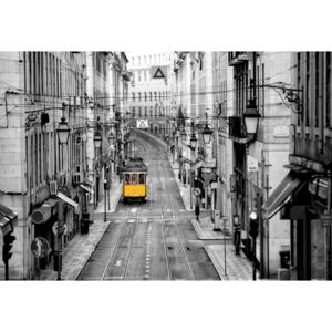 Fototapeta, Tapeta Lisbon Black And White, (368 x 254 cm)
