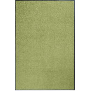 Hanse Home Collection koberce Rohožka Wash & Clean 101470 Green - 60x90 cm