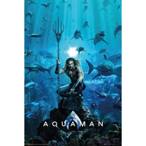 Plakát, Obraz - Aquaman - One Sheet, (61 x 91,5 cm)